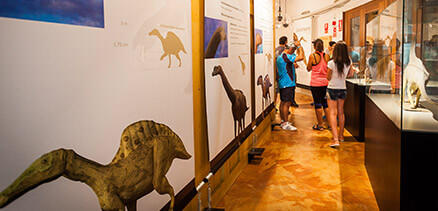 Museo cretácico y visitas guiadas